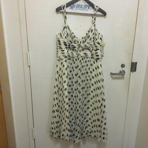 NWT Jones silk dress